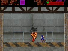 Ninja Gaiden Beta screenshot-1