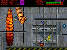 Ninja Gaiden Beta screenshot-4